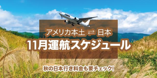 11月運航スケジュール