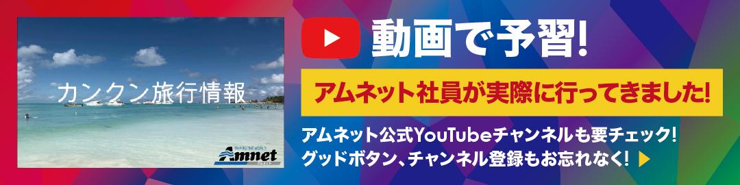 動画で予習!