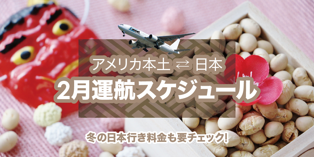 2月運航スケジュール✈︎冬の日本行き料金もご確認ください