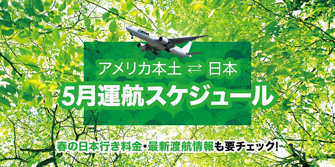 5月 運航スケジュール✈︎春の日本行き料金・最新渡航情報も要チェック!
